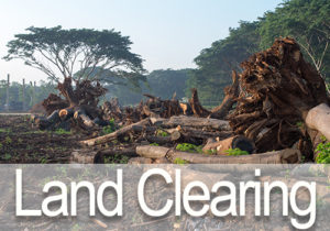 OKC Land Clearing