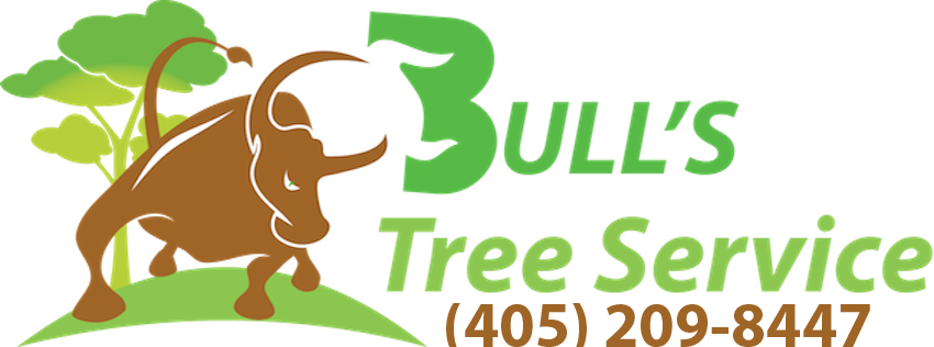Tree Service Oklahoma City